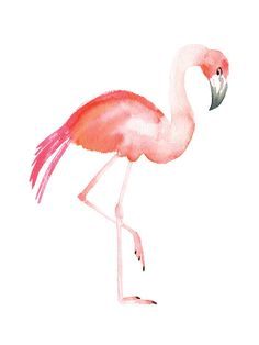 Flamingo Road Wall Art Prints by Smudge Design | Minted