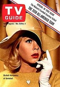 Bewitched   /    TV GUIDE