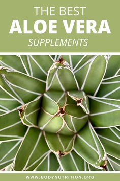 Many people use an aloe vera because it's great for your skin and it can fight oxidative damage, help build collagen, and possibly even help control blood sugar. It's not just for use after a bad sunburn. Read on if you want to find out about the best aloe vera supplements on the market right now and who should and shouldn't use them. #supplements #aloevera #naturalremedies