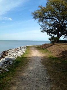 Hilton Head Plantation walking path