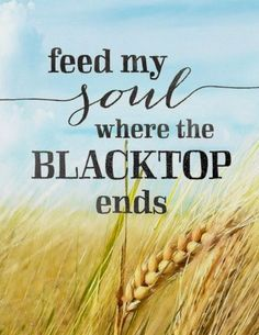 Feed my soul where the blacktop ends...