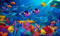 Ocean of Color via MuralsYourWay.com