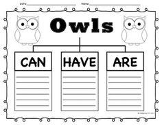 """Can, Have, Are"" graphic organizer for your owl inquiry! FREEBIE :)"