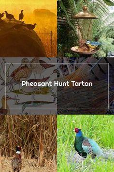 Pheasant Hunting, Tartan, Bird, Outdoor Decor, Fabric, Tejido, Tela, Birds, Cloths