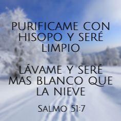 Purificame con hisopo y seré limpio, Lávame y seré más blanco que la nieve (Salmo 51:7) #Biblia