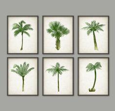 Palm Tree Botanical Wall Art Print Set of 6  by QuantumPrints