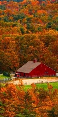 Autumn Orange - doesn't this picture make you want to take a deep breath in and smell the crisp autumn air. Great scenery & a great red barn❤