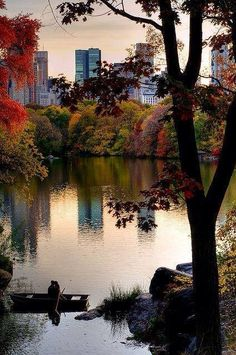 Central Park, NYC in Autumn. There is nothing like walking through Central Park in the fall. Central Park, New York Central, Beautiful World, Beautiful Places, Beautiful Pictures, Places To Travel, Places To See, Travel Stuff, Ville New York