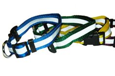 HSV Collar: NTI Global Online Store :: Purchase Dog Agility Products ...