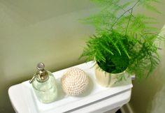 1000 images about bathroom plants on pinterest bathroom for Small bathroom plants