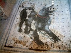 Cave canem mosaics ('Beware of the dog') were a popular motif for the thresholds of Roman villas