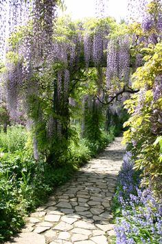 Broken-piece flagstone walkway cuts through the center of this thick garden.