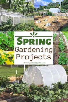 Spring gardening is fresh and exciting time. Our tips will prep your garden for the best vegetable season yet we have so many ideas and photos for how to organize arrange and grow your crops. Urban Garden Design, Plant Supports, Vegetable Seasoning, Garden Features, Gardening Tips, Vegetable Gardening, Spring Garden, Lawn Care, Growing Vegetables