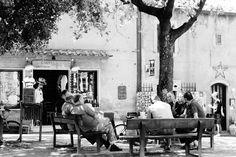 Bolgheri, la piazzetta principale