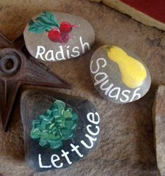 Painted River Rocks-doing this for my mom's birthday this year. I'll give the rocks with seeds or plants of what's on the rock!