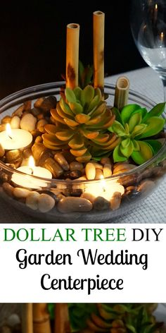 Dollar Tree Simply Succulent Centerpiece Perfect For Your Event or Home! #WeddingIdeasCenterpieces