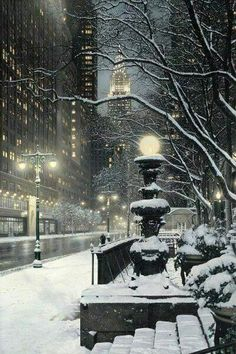 Enjoying snow today / hoping for White Christmas in #NYC!