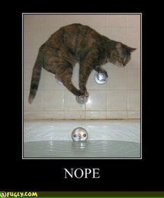 Nope... *