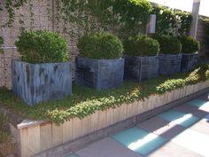 Trellis & Trugs   Chicago, IL Terrace Planters