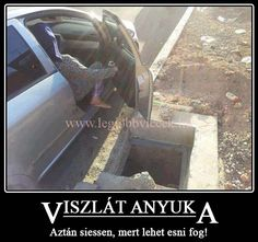 Viszlát! Funny Cute, Puns, Funny Jokes, Haha, Diy And Crafts, Funny Pictures, Feelings, Cool Stuff, Memes