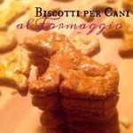 Biscottini al formaggio per i cani #bloggiallozafferano #giallozafferano #blog #food #dog #cookie