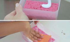 pegamento esponja