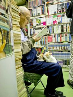 A bookstore that takes in homeless cats.  Truly offering reading joy : )