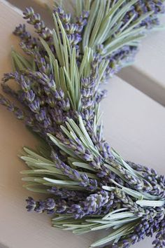 Lavender wreath (using lavender leaves too) Lavendel-Kranz Lavender Cottage, Lavender Green, Lavander, Lavender Fields, Lavender Flowers, Dried Flowers, Lavender Blossoms, Lavender Crafts, Lavender Wreath