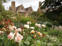 "Hidcote Manor Gardens were started by an eccentric transplanted American. One of the 1st to use garden ""rooms"".Saw it this summer-absolutely lovely."