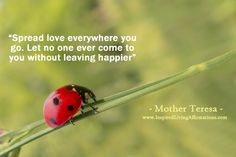 Spread love everywhere you go. Let no one ever come to you without leaving happier.  – Mother Teresa