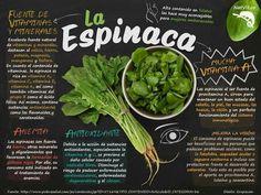 Beneficios de la Espinaca