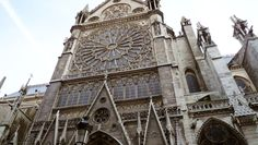 Feast of Our Lady of the Assumption at Notre Dame Cathedral to hear Mass on Aug. 15, 2011