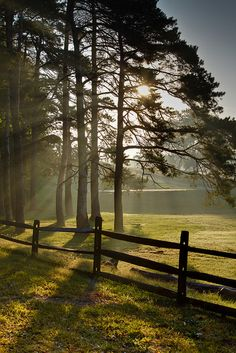 51 New ideas country landscape photography scenery Beautiful World, Beautiful Places, Beautiful Pictures, Trees Beautiful, Beautiful Sunrise, Ed Wallpaper, Country Life, Country Roads, Country Fences
