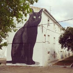 @themuseumofurbanart Artwork by @escif #streetart #graffiti #art #urban #urbanart #museum #artsy #artistic #mural #arts #wallporn #photooftheday #contemporaryart #picoftheday #instadaily #artwork #arte #artist #spraypaint #publicart #outdoorart #tmoua #graffitiporn #artlife #cat #gato