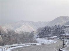 スキー場へと続く道 - Google 検索