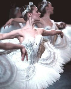 Swan Lake Ballet, Ballet Dance Photography, Australian Ballet, Paris Opera Ballet, Svetlana Zakharova, Ballerina Project, Misty Copeland, Ballet Dancers
