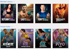 If you own several workout DVD programs like me – you know it's easy for one disc (or a program) to get misplaced. As soon as you're ready for it, it's the ONE you just can&…