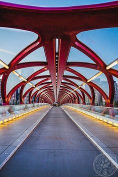 Looking into the Peace Bridge in Calgary #yyc
