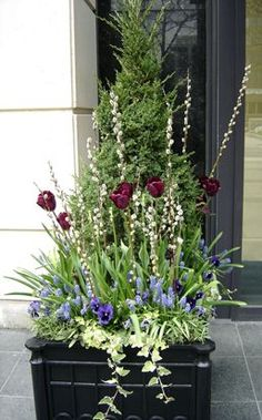 Classic box planters get a bold yet elegant new look, spring, summer, fall and winter (Spring).