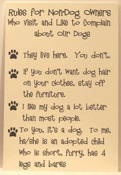 Rules for non-dog owners  who visit and like to complain about our dogs.