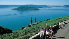Lake Biel/Bienne,Switzerland