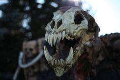 animal skull... Not his actual teeth I assume