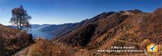 Da Porera al Pizzo Leone: una bellissima gita panoramica sul lago Maggiore