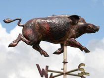 Weathervane wild pig boar