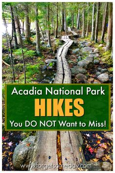 Get your hands on this detailed list of easy hikes in Acadia National Park in Maine! : Get your hands on this detailed list of easy hikes in Acadia National Park in Maine! Acadia National Park Hiking, Us National Parks, Arcadia National Park, American National Parks, East Coast Travel, East Coast Road Trip, Maine Road Trip, Visit Maine, New England Travel