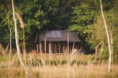 Sustainable, Off-Grid Modern Tiny Cabin in Devon, England 01