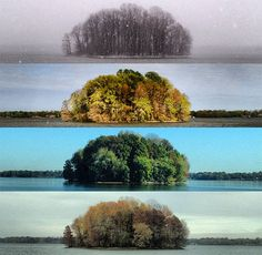 "Photo enthusiast Tyler Casson visited a lake four times over the course of a year and photographed an island from the same spot each time. He calls the project, ""The Four Seasons of the Bush."" More here: http://www.petapixel.com/2012/12/11/photos-of-an-island-across-four-seasons/"