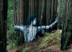 """widewalls-artmagazine: """" HULA / Sean Yoro once more tackles the theme of climate change with an amazing temporary mural done with natural chalk that washes away entitled """"Pūliki"""" ( """"to embrace"""" in Hawaiian ) """""""