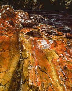 Polished quartzite above Irenabyss, Franklin River, Tasmania, 1979 [picture] Tasmania, Australia, River, Island, Pictures, Photos, Digital, Places, Nature