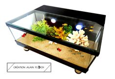 Table Basse Aquarium | Idées de Cadeau Original | Pinterest | Aquariums